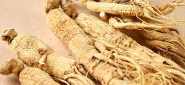 suma-root