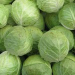 Cabbage1